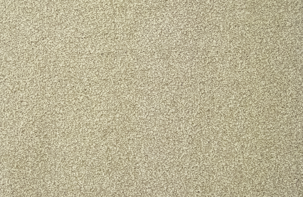 Dolce Moda Heathers 2 7m X 4m Half Price Carpet