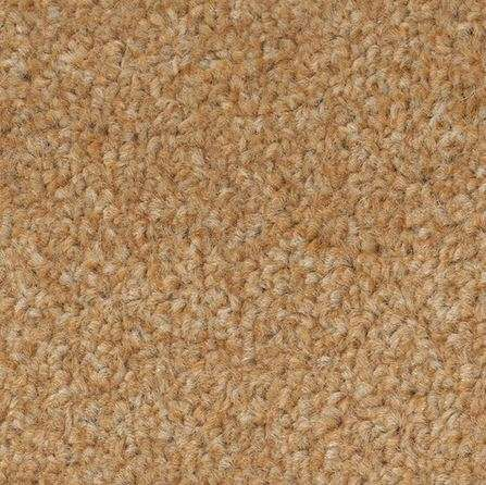 Carefree Carpets Spectrum Available Here In 12 Colours